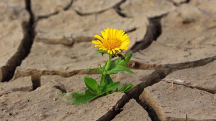 Encare a vida com positividade!